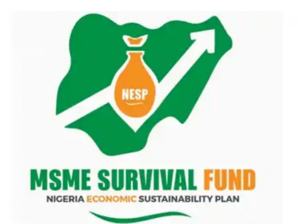 Survival Fund Shortlisted Candidates 2021 List of Selected / Successful / Beneficiaries survivalfund.gov.ng/auth/login